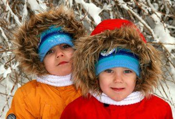 twins-1150190_1280